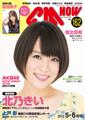 イメージ:CM NOW Vol.162 2013年5/6月号