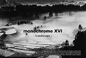 monochrome XVI 「Landscape」