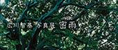 広川智基 写真展「密雨-mitsu-」