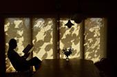 今森光彦展「写真と切り絵の里山物語」