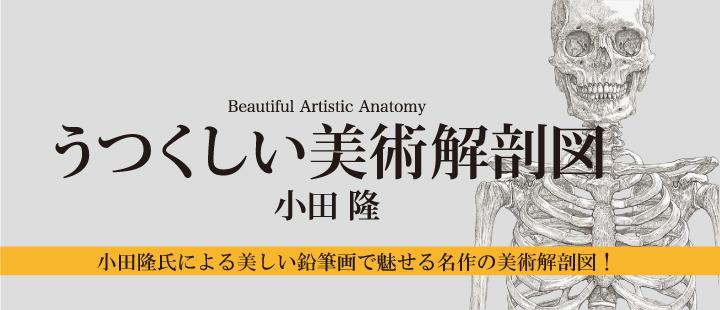 美しい美術解剖図